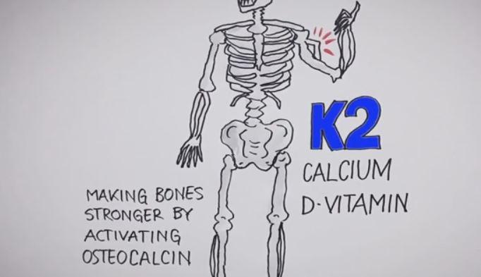Osteocalcin