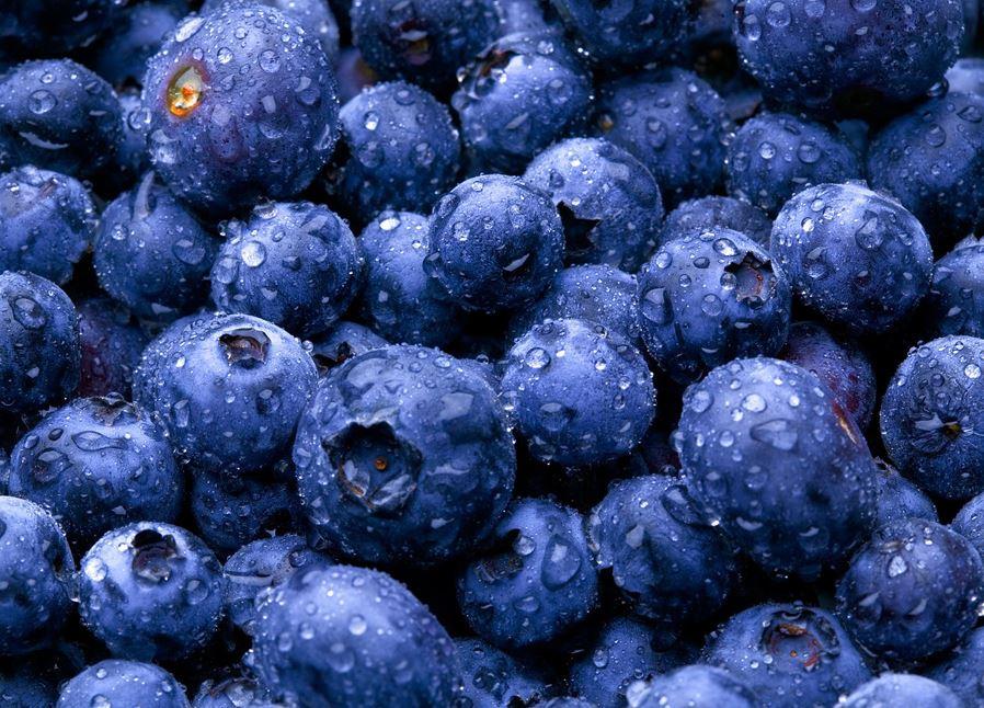 blåbär mot lös mage